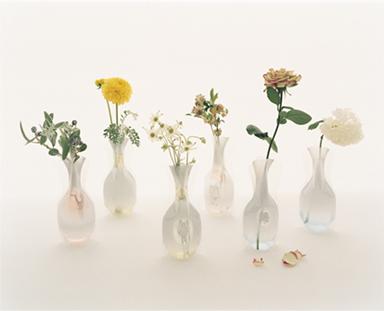 d-flower.jpg